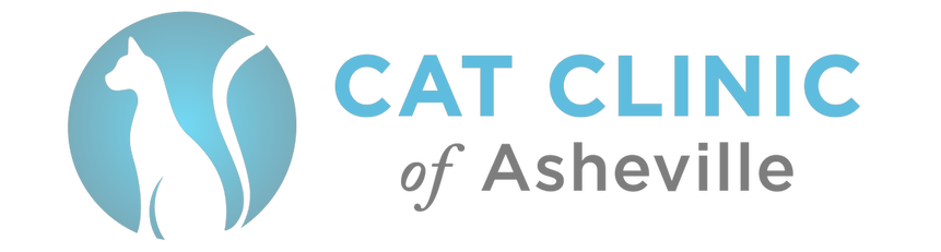 Cat Clinic of Asheville - Your Cat Veterinarian
